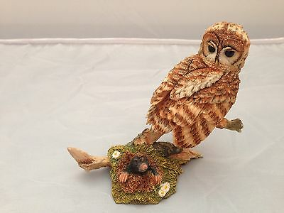 BNIB New Boxed TAWNY OWL WITH MOLE #04641 Country Artists