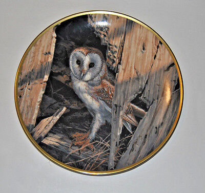 "Hamilton Collector's Plate ""Waiting for Dusk"" Owl Spode China Plate"