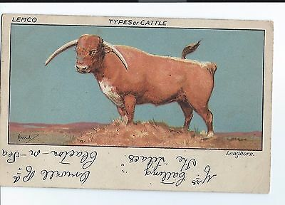 Lemco, Types of Cattle - Longhorn - by Hassall