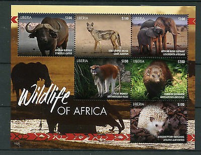 Liberia 2015 MNH Wildlife of Africa 6v M/S Monkeys Elephants Hedgehogs Stamps