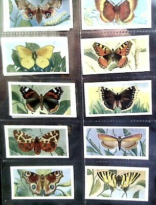 Butterflies and moths Sweetenham tea cards,25/25