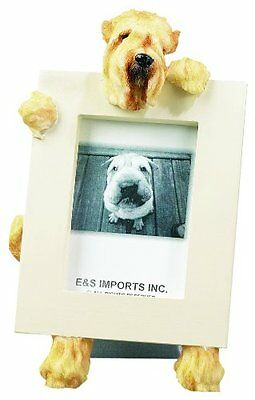 Soft Coated Wheaten Terrier Dog Picture Photo Frame