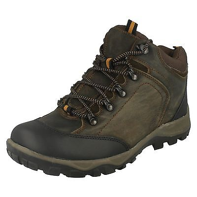 Wholesale Mens Hiking Boots 12 Pairs Sizes 7-12  A3035