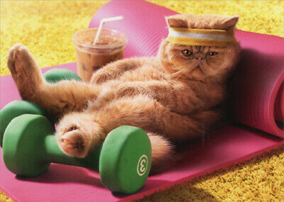 Exhausted Exercise Cat Funny Mothers Day Card - Greeting Card by Avanti Press