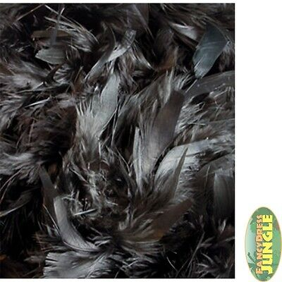 BLACK DELUXE FEATHER BOA 2M DANCING MASQUERADE ladies fancy dress accessory