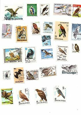 Birds of Prey & Vultures mix of 25 different postage stamps
