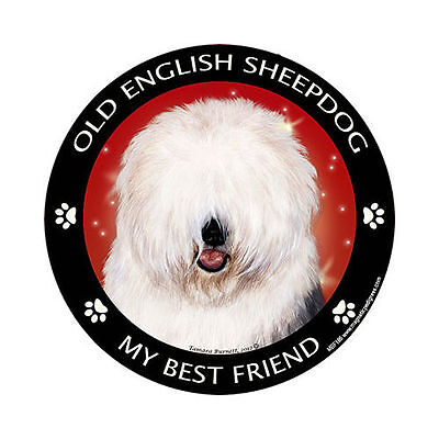My Old English Sheepdog Is My Best Friend Dog Car Magnet