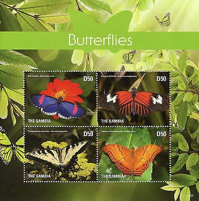 Gambia 2015 MNH Butterflies 4v M/S I Insects Cruiser Postman Butterfly Stamps