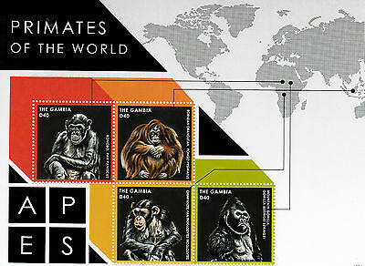 Gambia 2013 MNH Primates of World 4v M/S Orangutans Chimpanzees Gorillas Stamps
