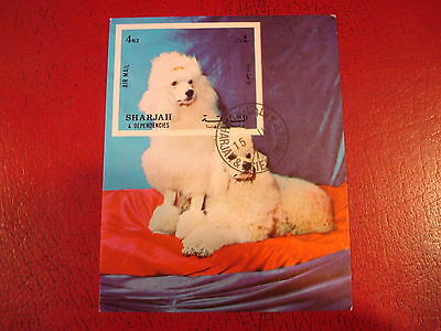 Sharjah - 1972 Poodle - Minisheet - Unmounted Used - Ex. Condition