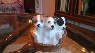 Royal Doulton Character Terrier Dog puppies in basket - hn2598