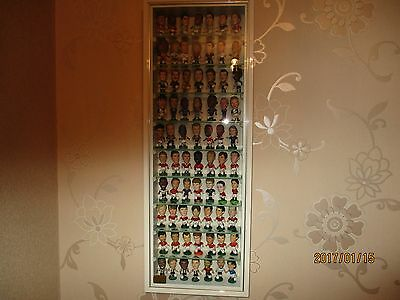 Picture Pride Display Cabinet With 70 Pro Stars Plus Another 50 !!!!