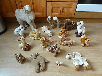 Bundle Of 17 Plush Soft CAMELS 17 inches High max