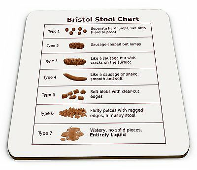 Bristol Stool Chart - Funny Quality Square Wooden Coaster For Doctors & Nurses