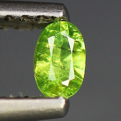 0.22 Cts_Wow Amazing Hot Sale Oval Cut_100 % Natural Russian Demantoid Garnet