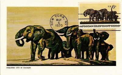 Dr Jim Stamps Us Elephant Herd Natural History Museum Fdc Colorano Postcard