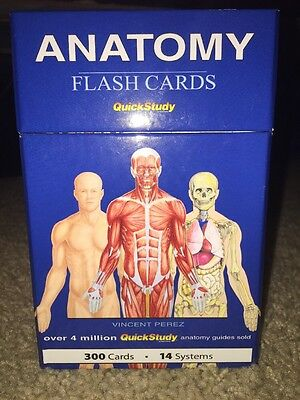 Like New! Anatomy & Physiology: Anatomy Flash Cards Quick Study