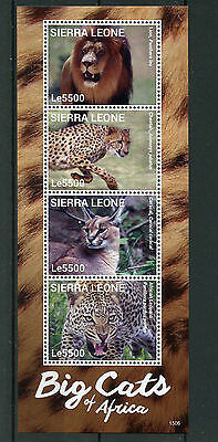 Sierra Leone 2015 MNH Big Cats of Africa 4v M/S II Wild Animals Lions Stamps
