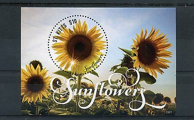 St Kitts 2015 MNH Sunflowers 1v S/S Sun Flowers Nature Flora Stamps