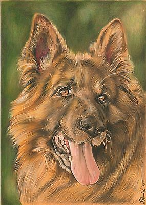 Pet Custom Portrait Colored Pencils Drawing from your photo,Dog/Cat memorial art