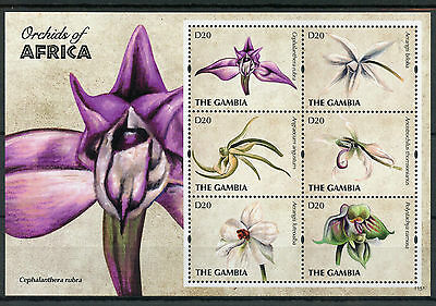 Gambia 2011 MNH Orchids of Africa 6v M/S II Flowers Flora Stamps