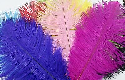 10 Coloured Ostrich Feathers 22-25cm  -  Fascinator, Fan, Costume, Floristry