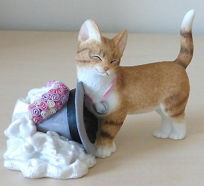 Tabby and White Kitten with Veil and Top Hat by Sherratt and Simpson
