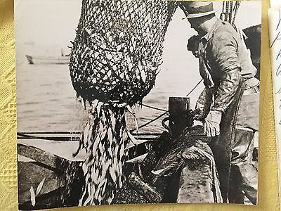 CUBA TYPICAL WORKER FISHERMAN STAMPED CORRALES VINTAGE PHOTO 1950s