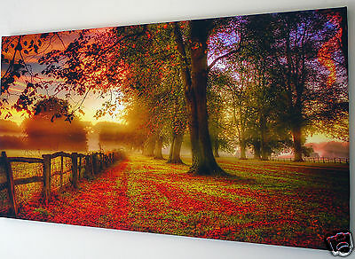 "Autumn Trees Avenue  Canvas Wall Art Picture Large 18"" X 32"" Inch"