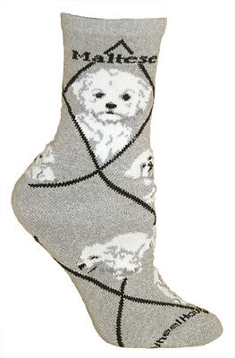 Maltese Puppy Dog Breed Gray Lightweight Stretch Cotton Adult Socks