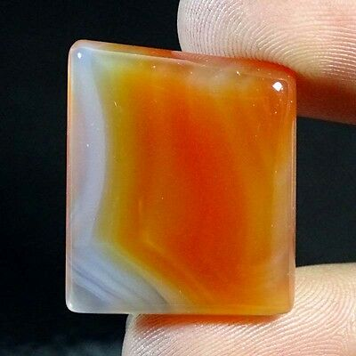 30cts A+ 100% Natural Botswana Agate Fancy 24x20 Cabochon