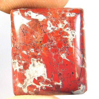 17.4Cts Adorable 100% Natural AFRICAN BLOOD STONE CUSHION 16X18X4 Loose Gemstone