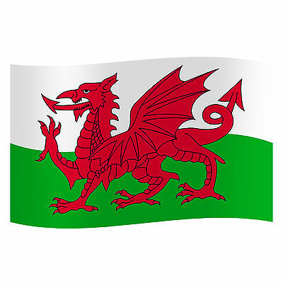 Wales Welsh Cymru Football Rugby Flag Festival Green Man Hay Wakestock 3 x 5 ft