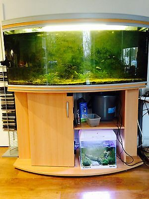 large curved front fish tank with cabinet approx. 300L capacity RENA brand