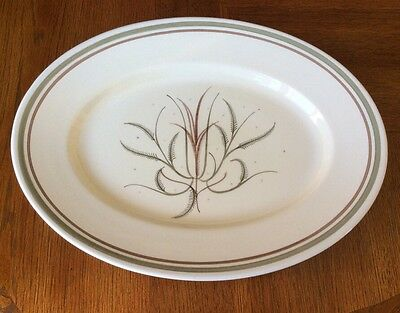 Rare Vintage Susie Cooper Hand Painted Large Meat Platter In Highland Grass