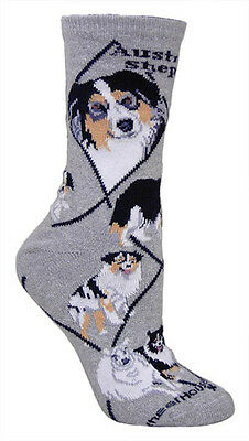 Australian Shepherd Dog Breed Gray Lightweight Stretch Cotton Adult Socks
