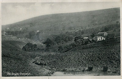 1930s Postcard The Dingle CWMCELYN Monmouthshire