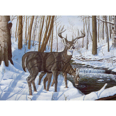 "Paint By Number Kit 15.375""X11.25"" Winter Bliss PAL-43"