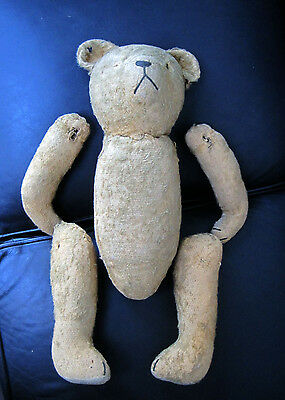 Large old teddy bear for TLC