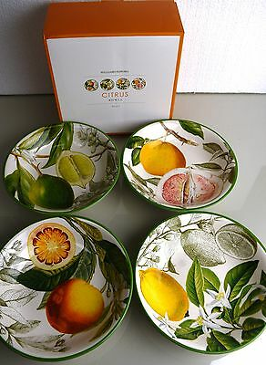 New in box! Williams Sonoma CITRUS Porcelain BOWLS Lemon Orange Lime Set of 4