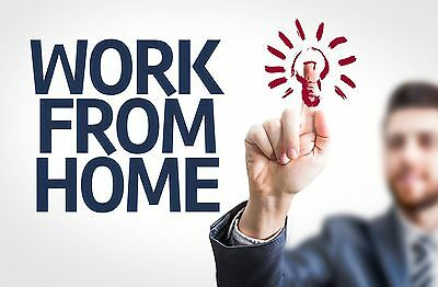 P/Time Home Business - Website + eBay Store with 22,000+ feedback - $9000 pw T/O