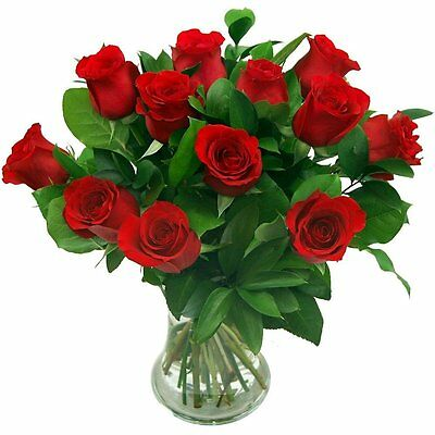 Clare Florist 12 Luxury Red Roses Fresh Flower Bouquet For Valentines Day Gift