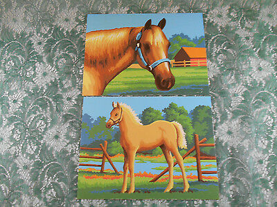"Pair of Paint By Number Horse and Pony Pictures - 6"" x 8"""