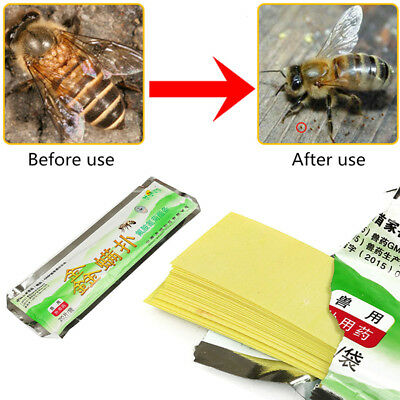 20pcs/Pack Beekeeping Fluvalinate Mite Killer Tool Set Pest Control Varroa Strip