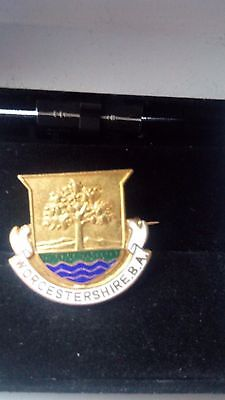 Badge (Worcestershire B.a. )