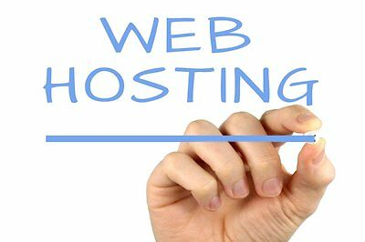 2 years SSD CPANEL Business class website WordPress cloud unlimited Web Hosting