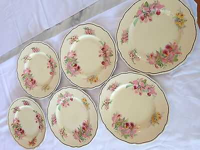 Royal Doulton 'Orchid' - Dinner Plates - set of 6