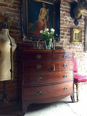Stunning George III Chest of Drawers Dresser Antique Mahogany 19th Century 1805
