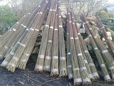 Living Willow Rods  Whips 100 x 1.5m Long