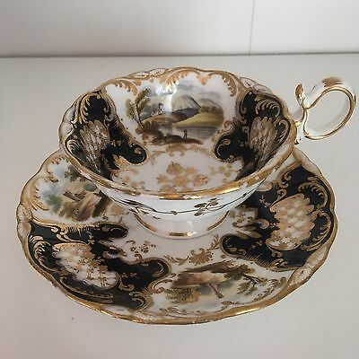 Rare And Collectible Coalport Cup And Saucer
